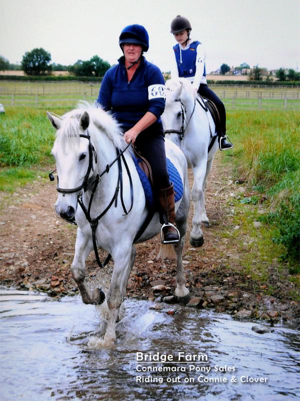 Bridge Farm - an Autumn ride out for Belinda and Jody
