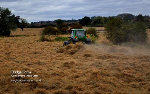 Bridge Farm hay harvest - turning the hay
