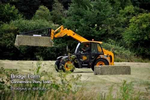 Bridge Farm brining in the hay in Summer 2013